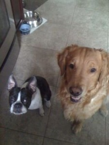Enzo and Eli